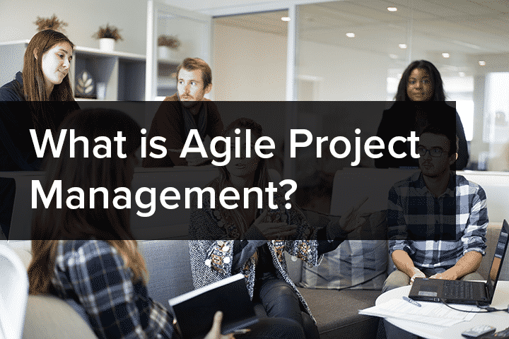 What Is Agile Project Management News Amp Blog Nilc