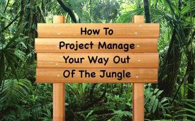 How To Project Manage Your Way Out Of The Jungle